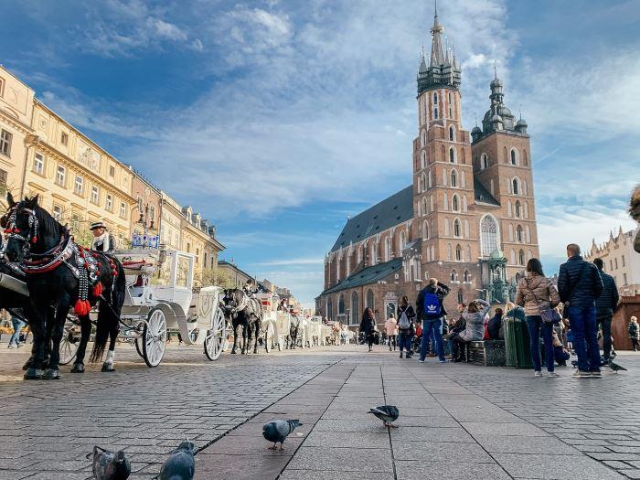 UM Kraków:                               Otwarcie Apteki pod Orłem